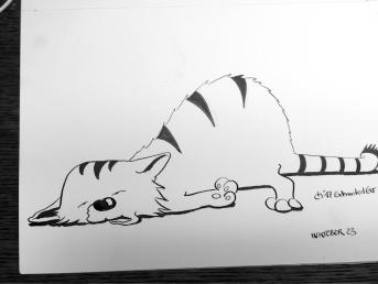 KittyCat23